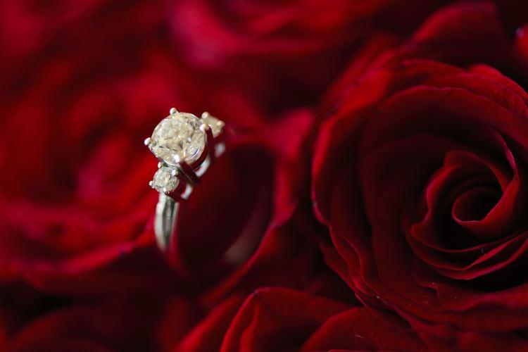 Red velvet wedding FADY RANA WEDDING CLIP FADY RANA WEDDING CLIP 2668 Cinematography Cinematography 2668